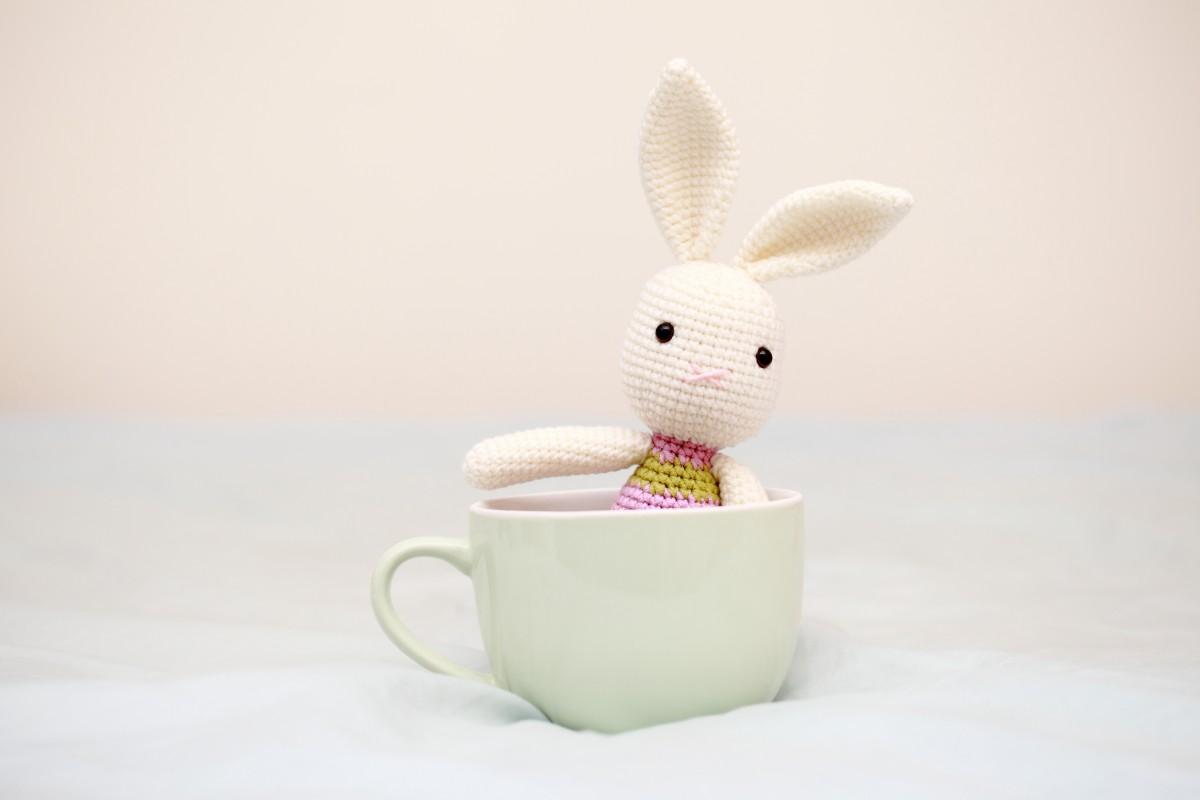 Bella's Bunny