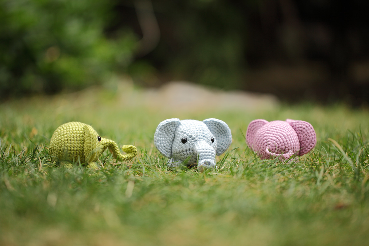 Three Baby Elephants