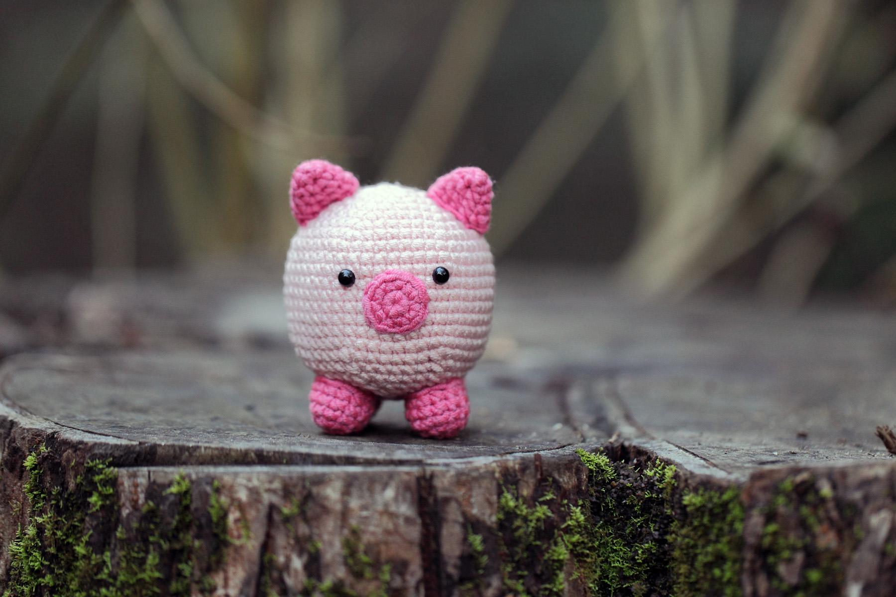 Little Pink Piggy